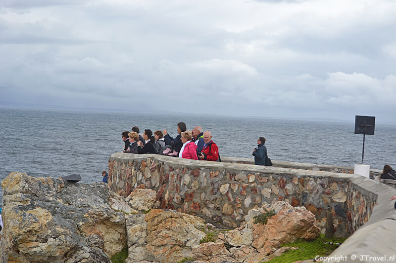 Walvisspotters in Hermanus